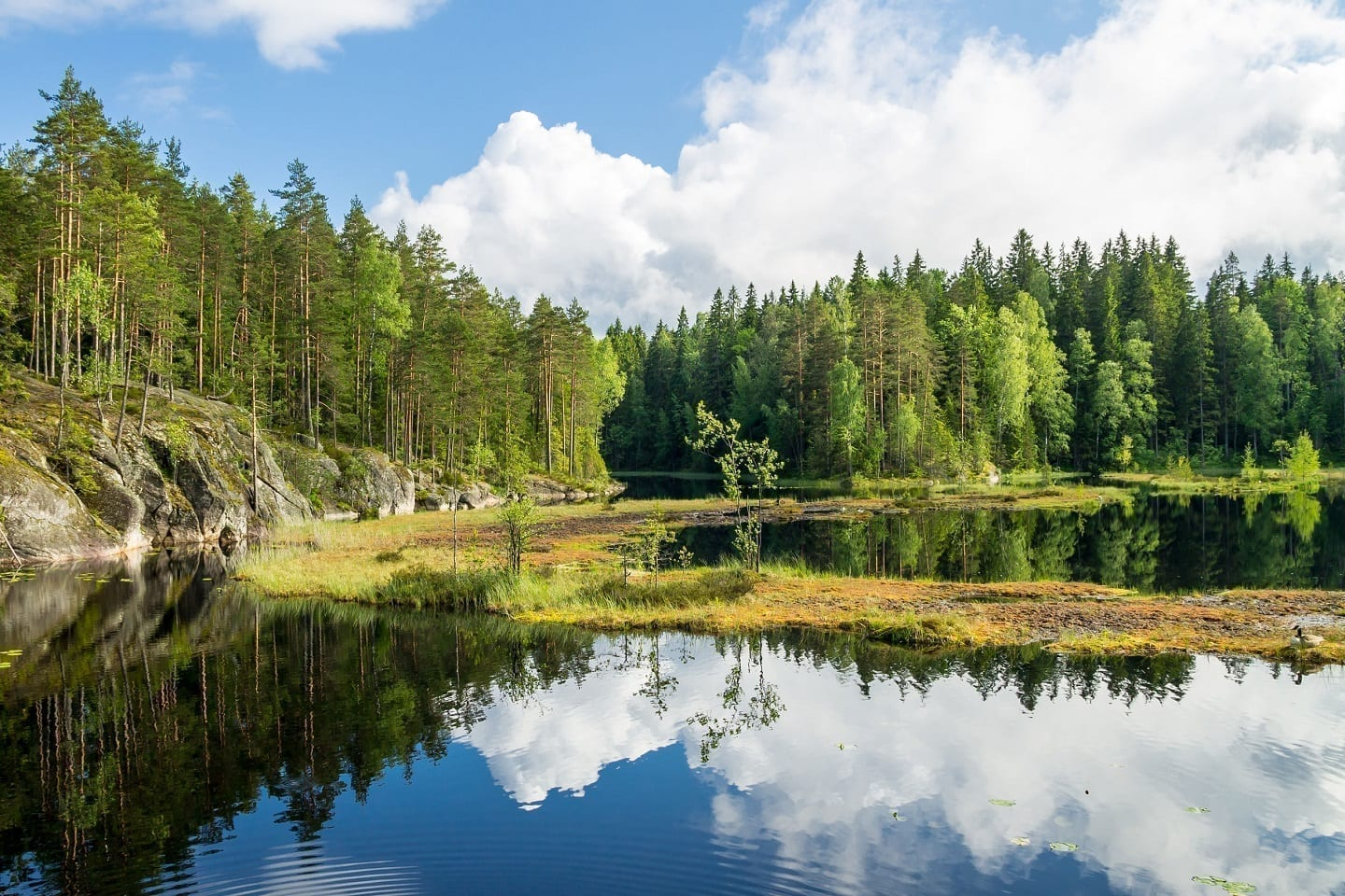 Shared Nuuksio National Park Tour from Helsinki
