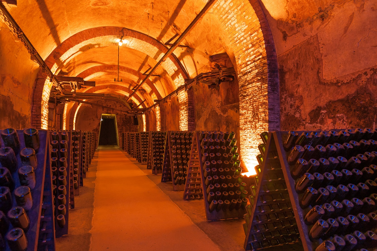 Champagne Tour From Paris(Champagne Tasting)