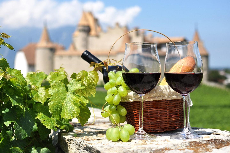 Wine Tour From Paris(Wine Tasting)